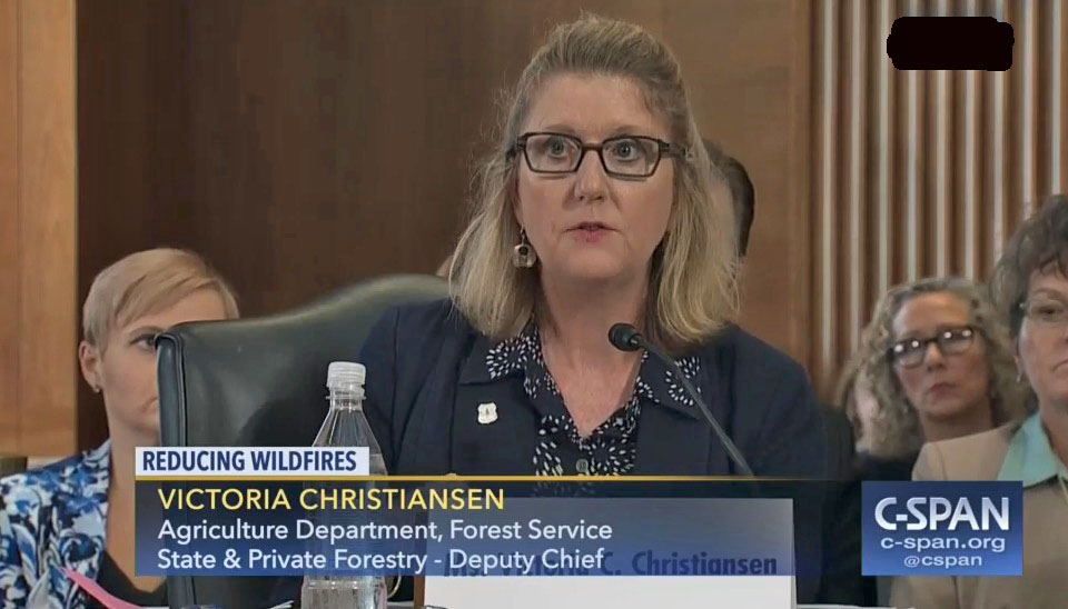 Vicki Christiansen selected interim Forest Service Chief