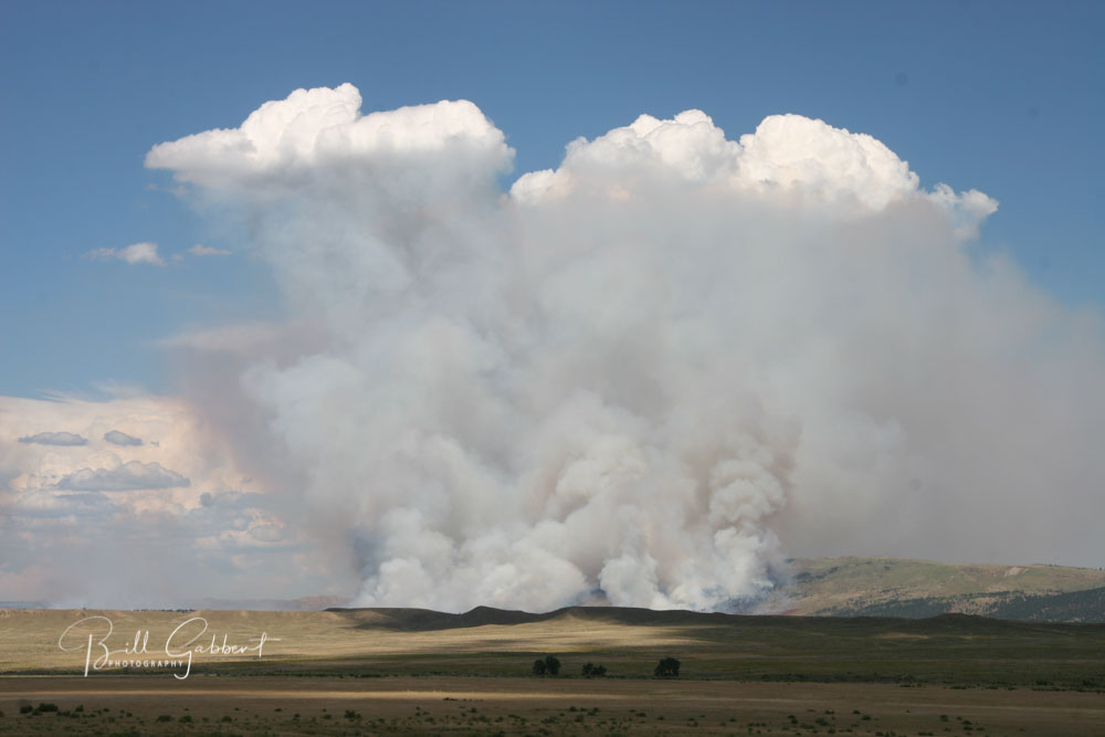 Whoopup Fire, Wyoming 2011