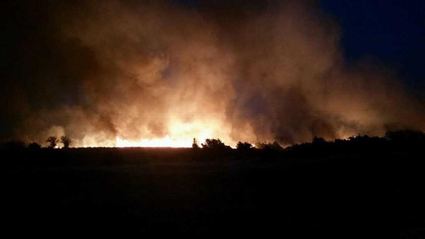 Rhea Fire