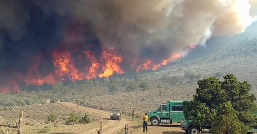 Horse Park Fire
