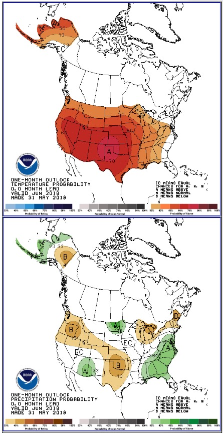 temperature and precipitation outlook three month