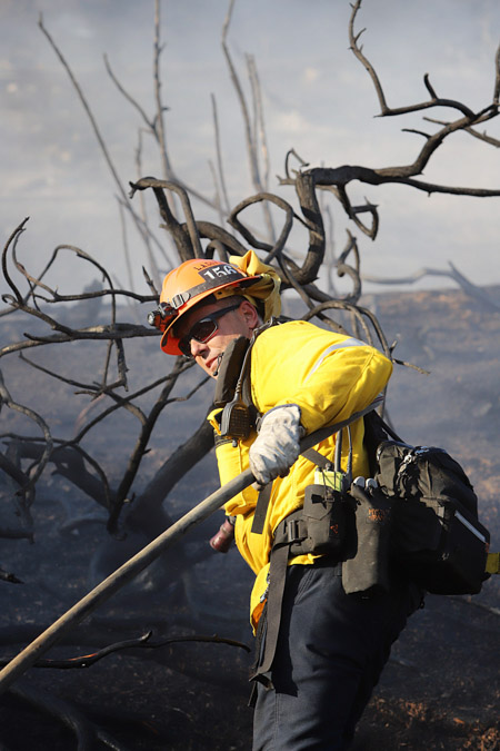 A Los Angeles County Fire Department Captain collects hose so that he can move it further up the hill.
