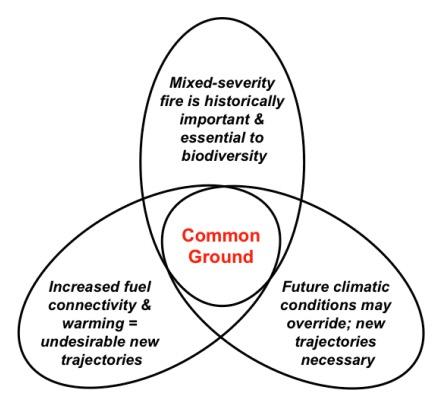 common ground wildland fire scientists