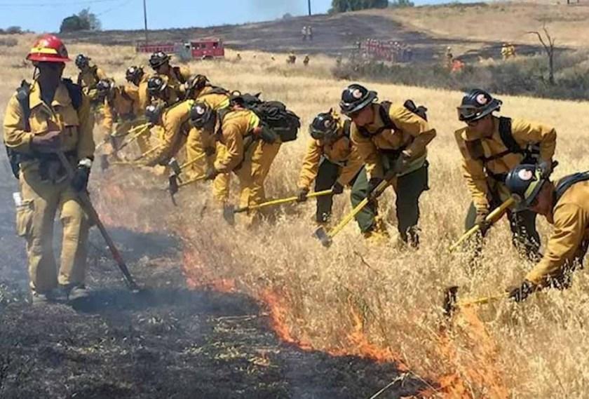 Los Angeles Fire Department's Crew 3 volunteers