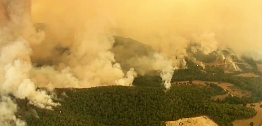 Wildfire in Bunrip State Park