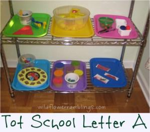 Tot School Posts