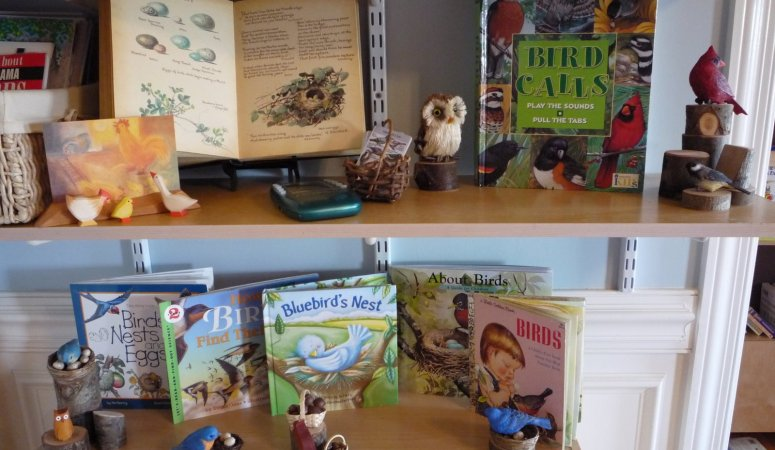 March Nature Table and Kinder-themes
