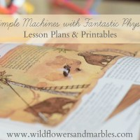 Simple Machines with Fantastic Physics - Lesson Plans & Printable