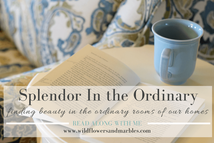 Splendor In the Ordinary - the Household (index post)