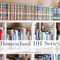Homeschool 101 series Index