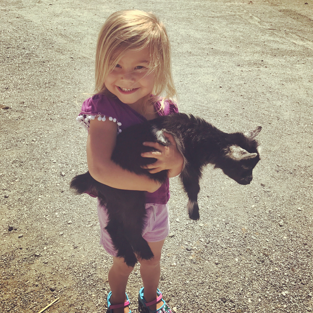 Little Girl holding baby goat