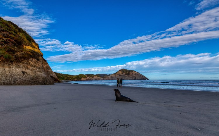 Wharariki Beach - Cape Farewell - Puponga New Zealand