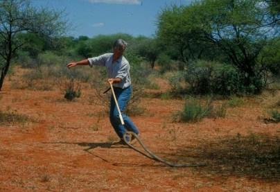Thomas catching a black mamba in Botswana