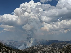 From Mule Peak LO 8-5. Picture courtesy of USFS