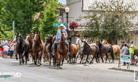 Kickoff at 75th Chief Joseph Days: The Bucking Horse Stampede