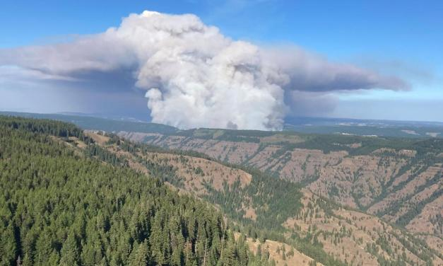 Umatilla National Forest and Wenaha Wildlife Area closed due to fires