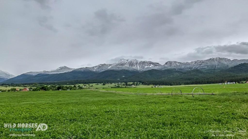 Irrigation season is underway and Mother Nature just added desperately needed moisture overnight.