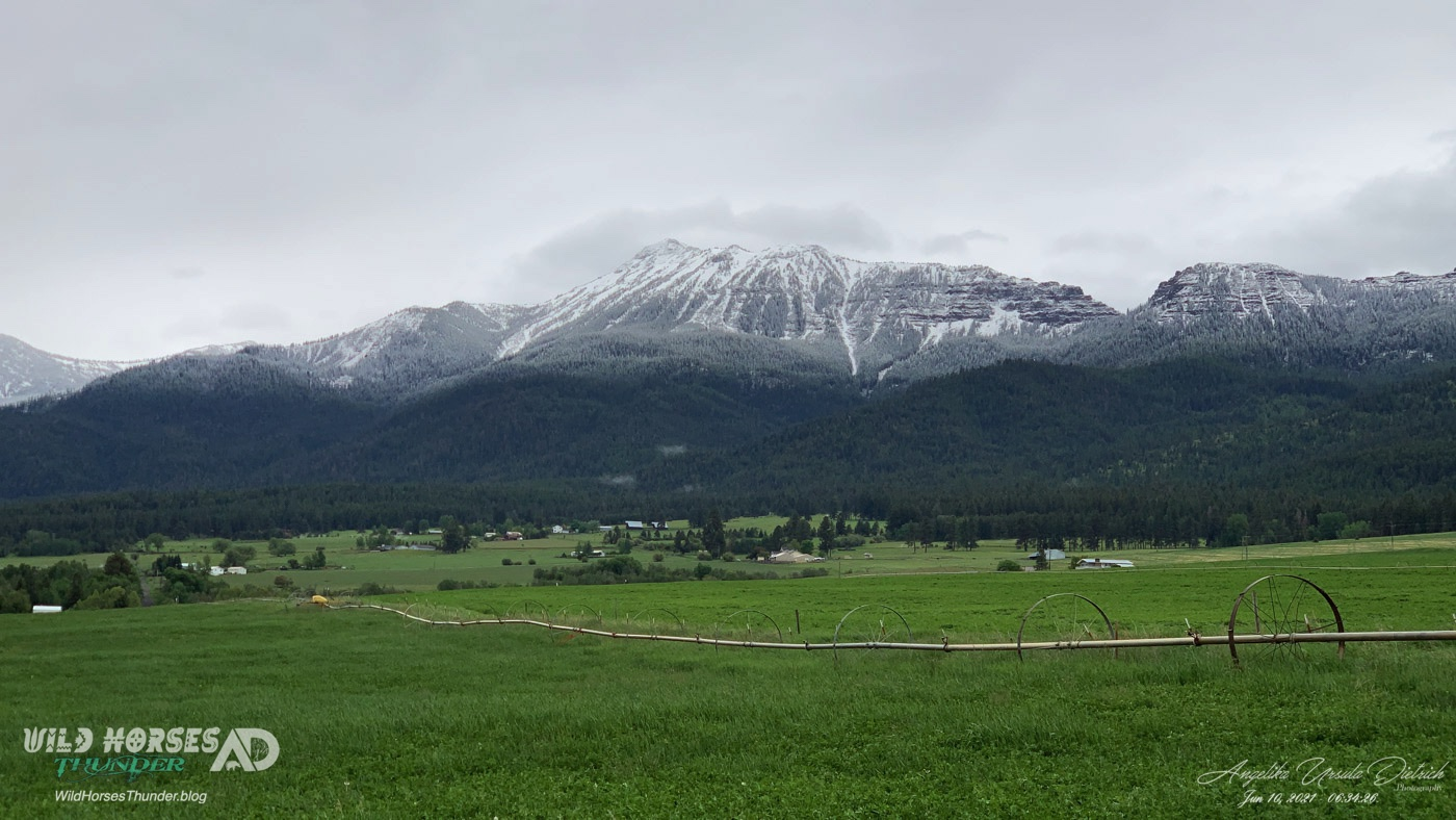 Ruby Peak showing a brand new snow line sits south of Highview Angus Ranch.
