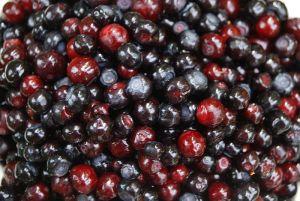 Five Health Benefits of Huckleberries