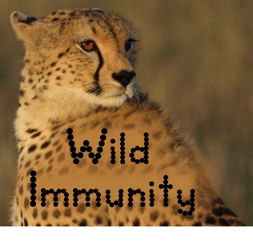 Wild Immunity