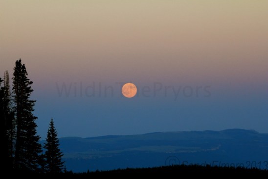 Full moon in the Pryors, July 22, 2013
