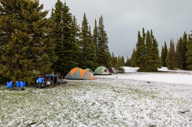 Our camp on the first afternoon.