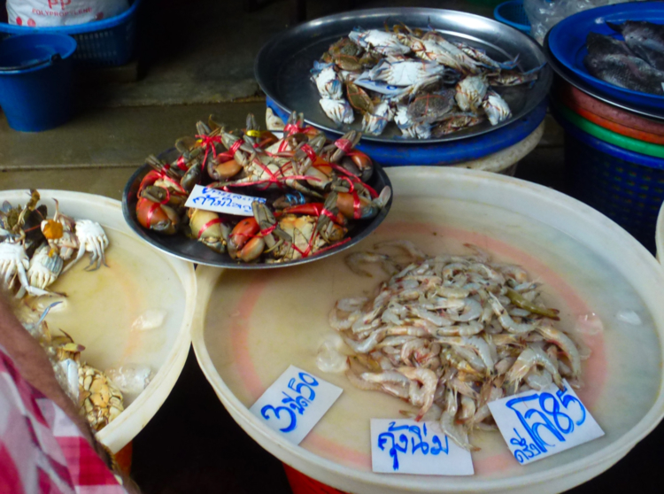 Seafood for sale at the market