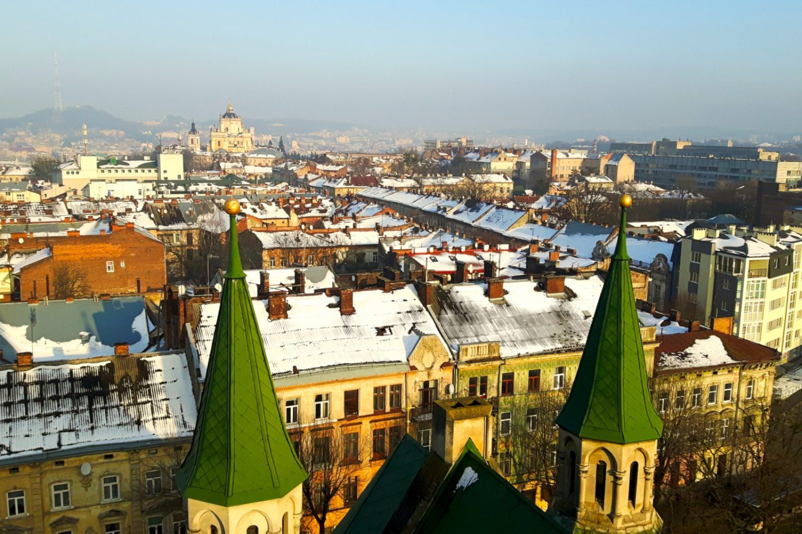 Lviv City View