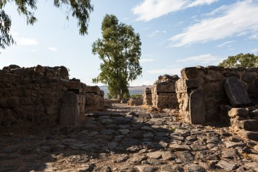 Roman City Gates