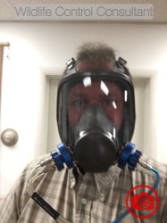 The author undergoing a fit test for wearing a respirator.