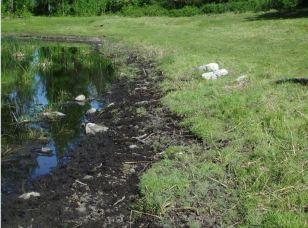 Lost Lake Before (12) web