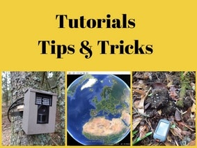 Wildlife Impulse Tutorial Tips and Tricks