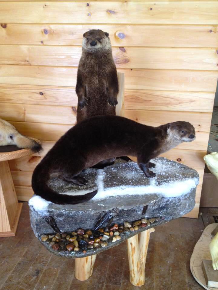 Otter Mount