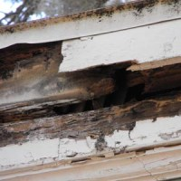 damaged facia of home