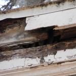 damaged facia of home