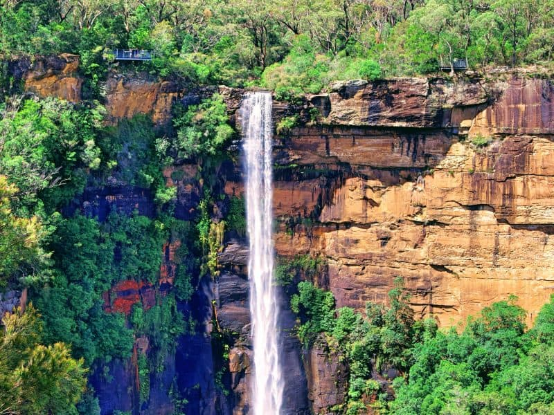 Fitzroy Falls - Wildlife, Waterfalls & Wine day tour from Sydney