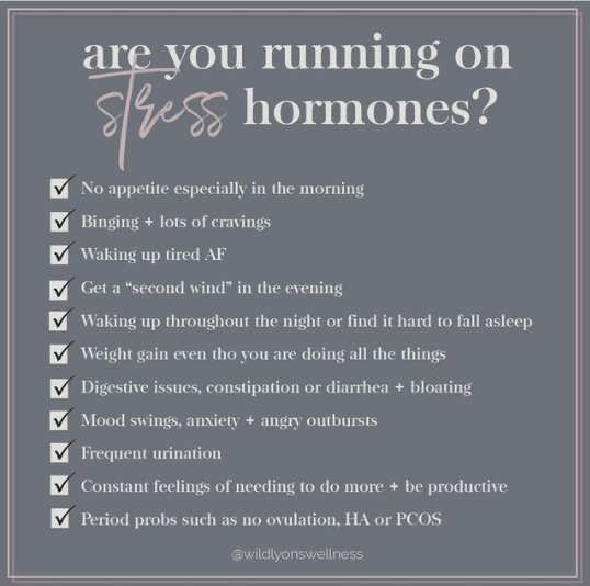 Are You Running on Stress Hormones?