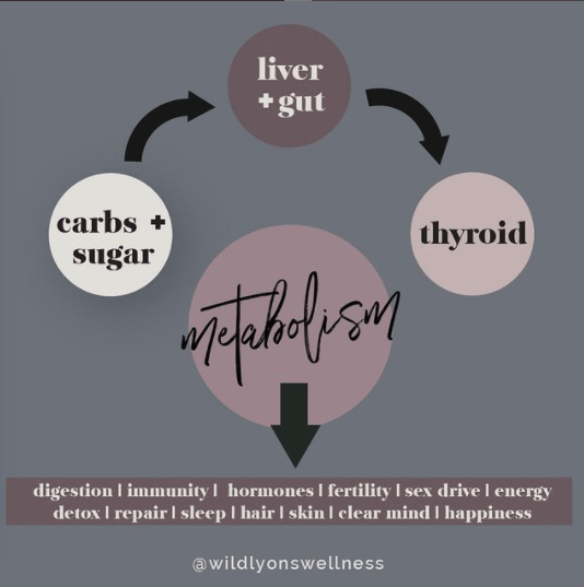 Your Metabolism Runs on Sugar and Carbs!