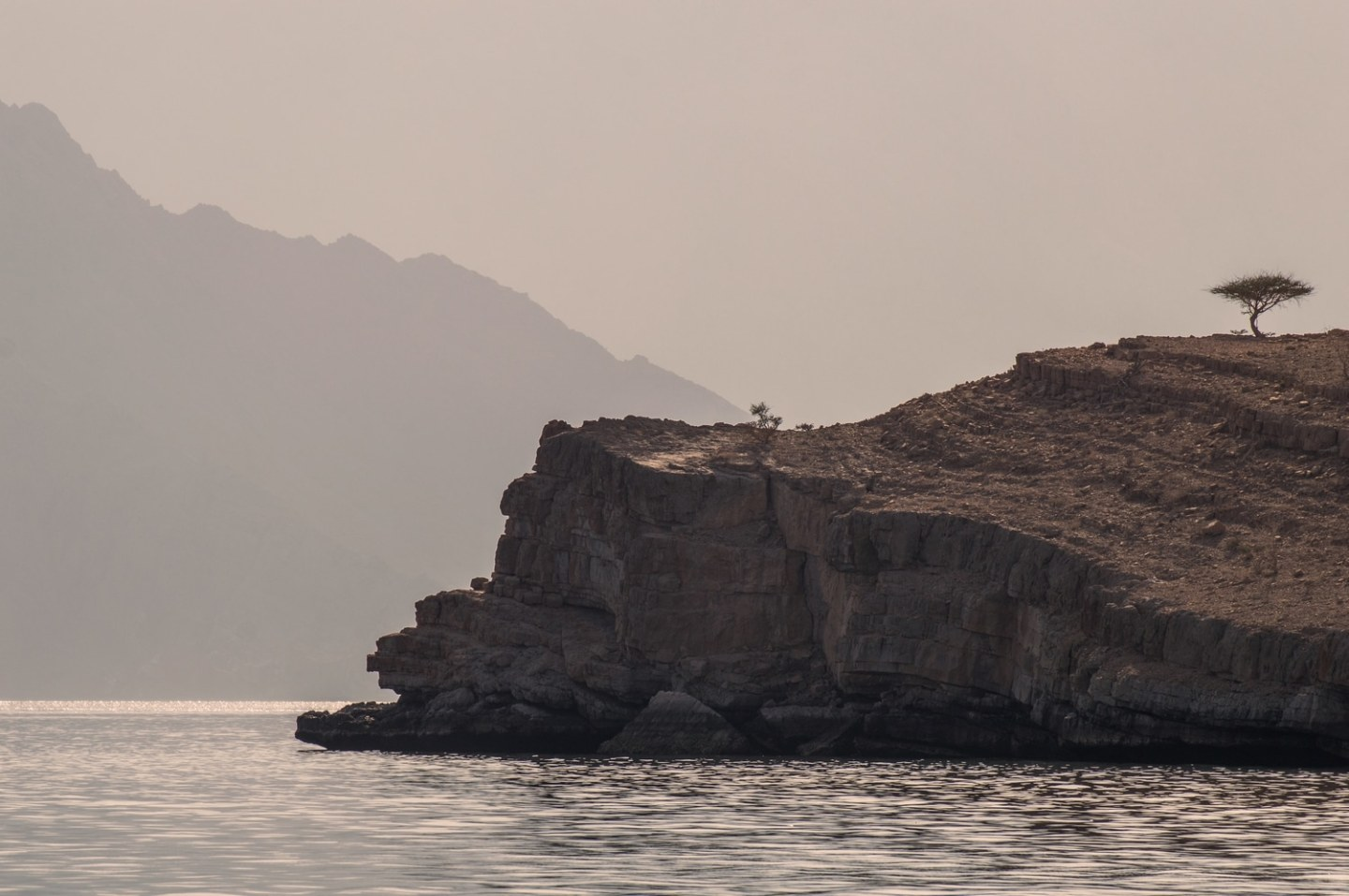 Musandam Fjords Oman dhow cruise