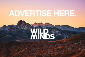 Advertise-Here-Wild-Minds