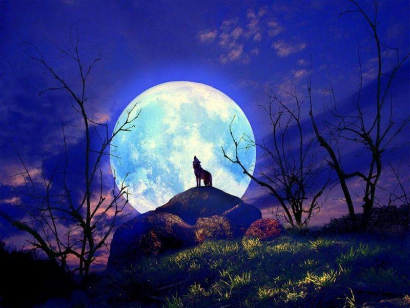 Full Moon in Virgo – 6 Card Reading Sale
