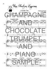 The Trusty Trumpet book of Champagne and Chocolate Web Sample2
