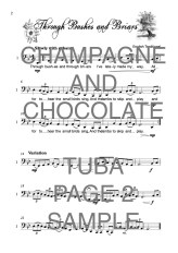 The Twinkling Tuba book of Champagne and Chocolate Web Sample1