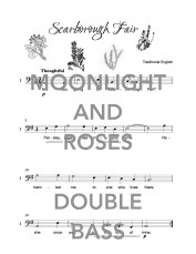 The Bubbly Double Bass Book of Moonlight and Roses Web Sample1