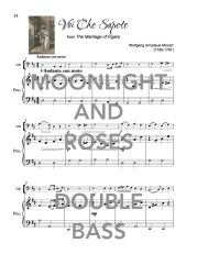 The Bubbly Double Bass Book of Moonlight and Roses Web Sample2