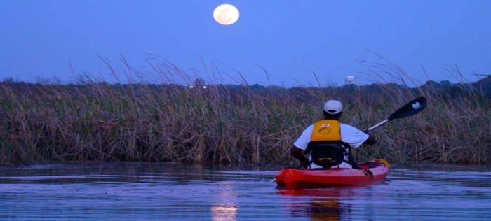 """The Stars Fell on Alabama"" Night Kayak Tour"