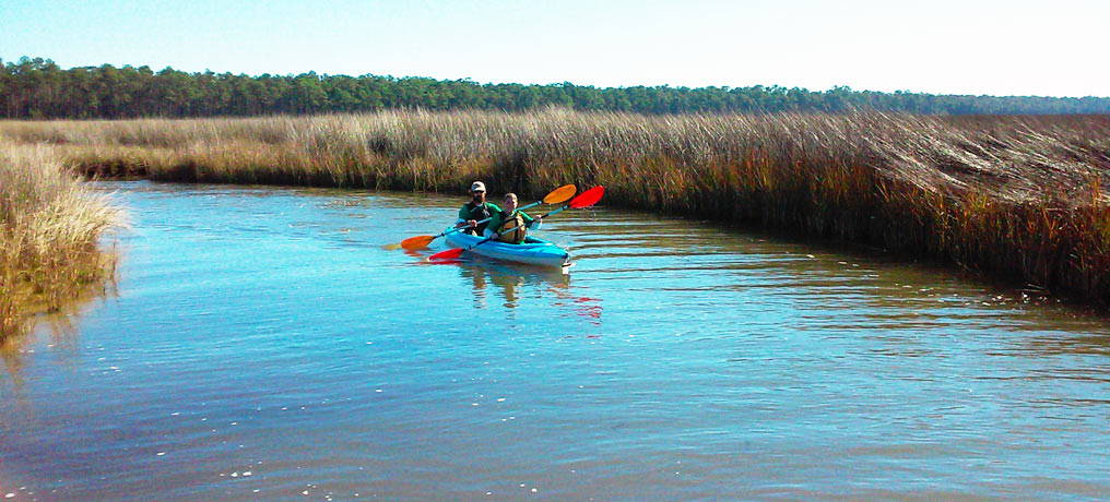 The Bon Secour National Wildlife Refuge Kayak Tour