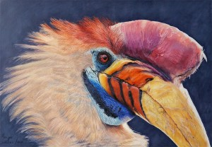 knobbed hornbill wildlife portrait in coloured pencil closeup drawing artwork realism work in progress