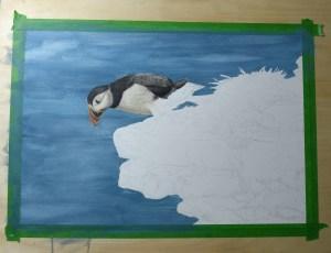 puffin coloured pencil artwork wildlife portrait