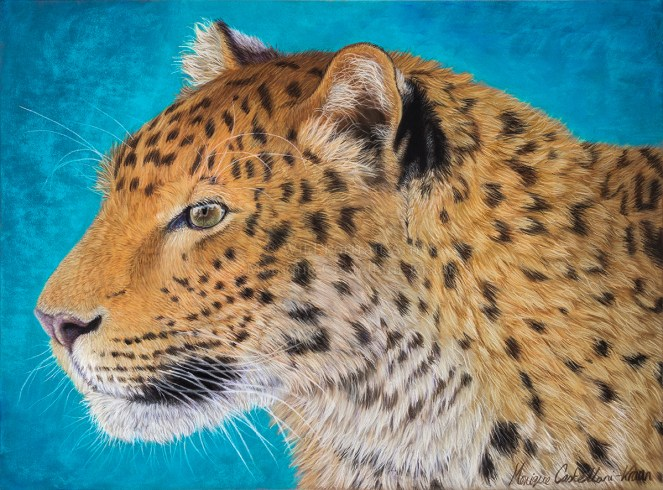 """Determination"" - 30 x 40cm portrait of an amur leopard in pastels."